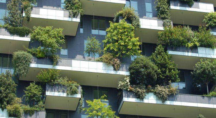 3 maneiras de ser sustentável no seu hotel ou pousada